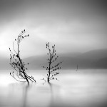 George Digalakis # Greece